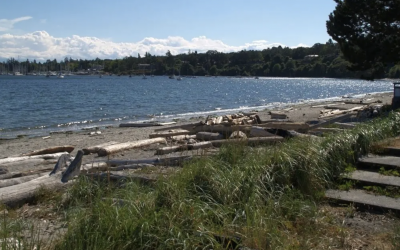 Amazing Beaches in Victoria BC
